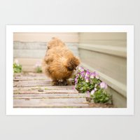 Taking the time to smell the flowers Art Print