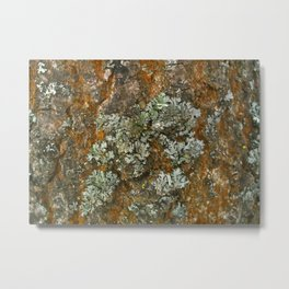 Super abstraction Metal Print