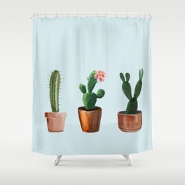 Three Cacti On Light Blue Background Shower Curtain