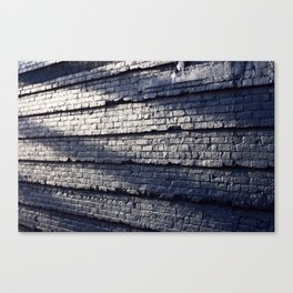Sideswiped  Canvas Print