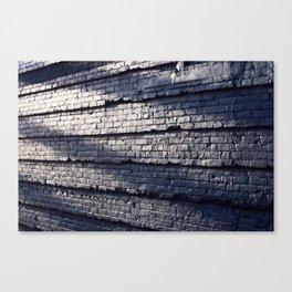 Sideswiped  Canvas Print