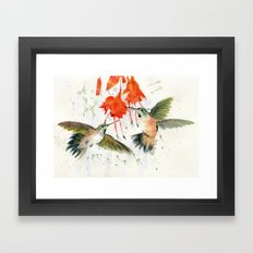 Hummingbird Watercolor Framed Art Print