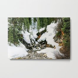 Winters Thaw Metal Print