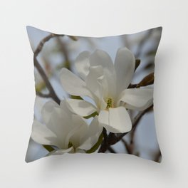 White Star Magnolia Blooming in the Spring Throw Pillow