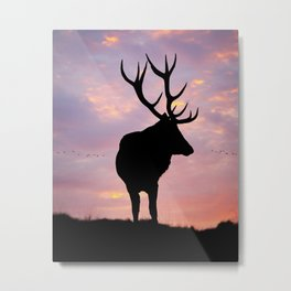 Stag And Sunset Metal Print