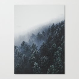 Snowy Evergreen Forest Fog (Color) Canvas Print