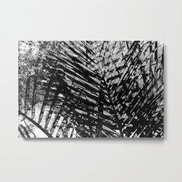 Palms [bnw] Metal Print