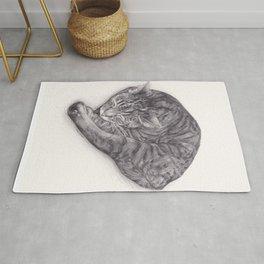 Bengal Cat Sleeping - Pencil Pet Drawing - Sketch by artist artwork Rug