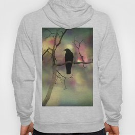 Crow Dreams In Colors Hoody