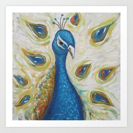 Peacock with White Art Print