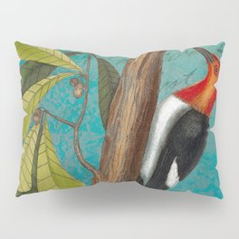 Red Headed Woodpecker with Oak, Natural History and Botanical collage Pillow Sham