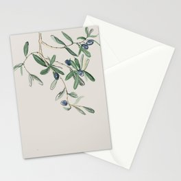 Olea Europaea - Black Olive Stationery Cards
