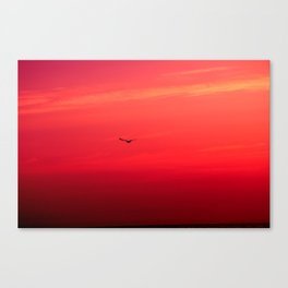 Crimson Sky Canvas Print