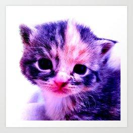 Blue Pink Cute Little Cat Art Print