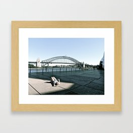 Lounging at the Sydney Harbour Bridge. Framed Art Print