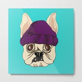 French Bully-Dog  Metal Print