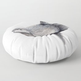 Ocean Sunfish (Mola mola) Floor Pillow