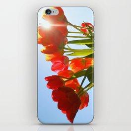 Tulip Flare iPhone Skin