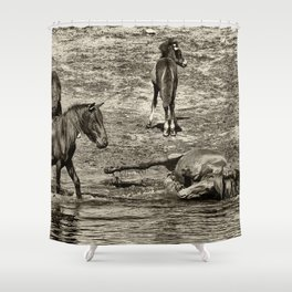 Horses taking a bath and relaxing Shower Curtain