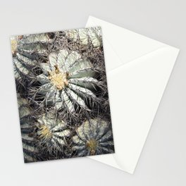 You Are Looking Sharp Stationery Cards