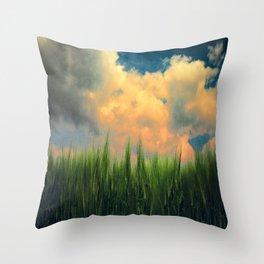 barley field Throw Pillow