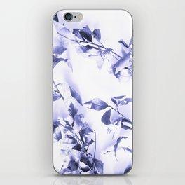 Bay leaves 3 iPhone Skin