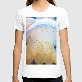 Jellyfish Cauliflower T-shirt