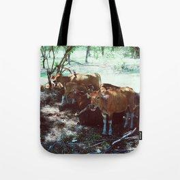 Gili Cows Tote Bag