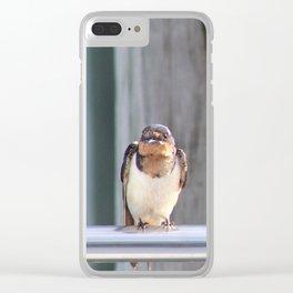 Bayou Barn Swallows (2) Clear iPhone Case
