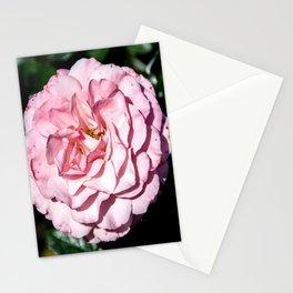 Sexy Rexy Rose Stationery Cards