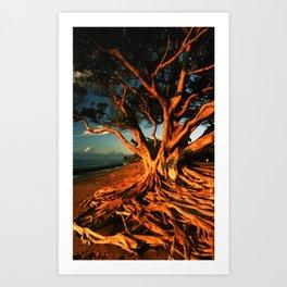 Oceanfront Tree Art Print