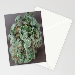 Master Kush Medical Marijuana Stationery Cards