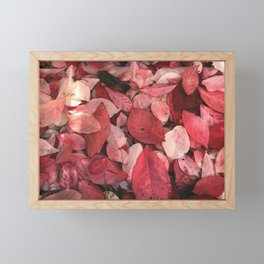 Autumn Leaves 5 Framed Mini Art Print
