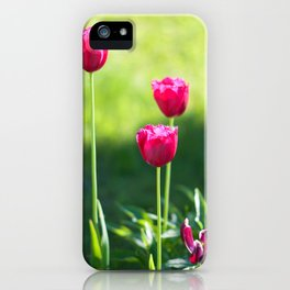 Three pink tulips iPhone Case