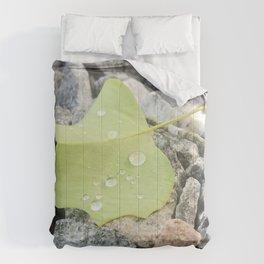 Dew Drops Comforters