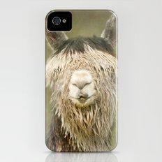 Alpaca with a fringe..! Slim Case iPhone (4, 4s)