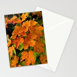 glowing autumn leafs Stationery Cards