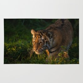 Tiger cub in the grass Rug