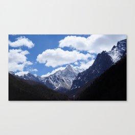6032m Canvas Print