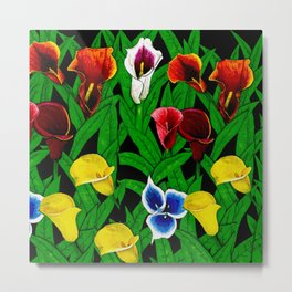 Large Calla Lillies Metal Print