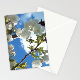 Pure Stationery Cards