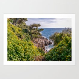 Yellow flowers on the seacoast of Cap Martin in a sunny winter day Art Print
