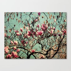 Pink Japanese Magnolia Tree in Flower Canvas Print