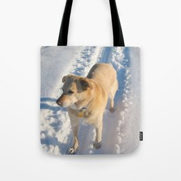 Dogs | Dog | Waiting Dog | Golden Lab Tote Bag