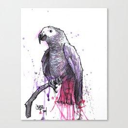 Jewel the Grey Canvas Print