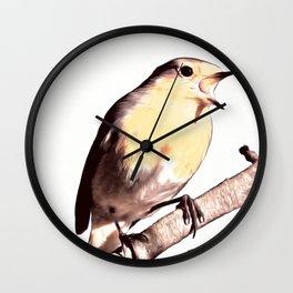 The Winter Robin Song Wall Clock