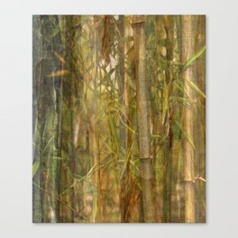 Bamboo screen Canvas Print