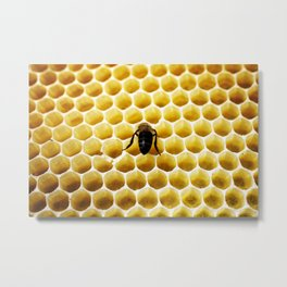 Geometric Bee Metal Print