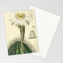 No. 13 Stationery Cards
