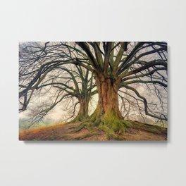 Fantasy Trees Metal Print